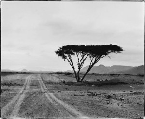eritrea,landscape,photography-40a26675cb191c697015111be3e2ffcb_h